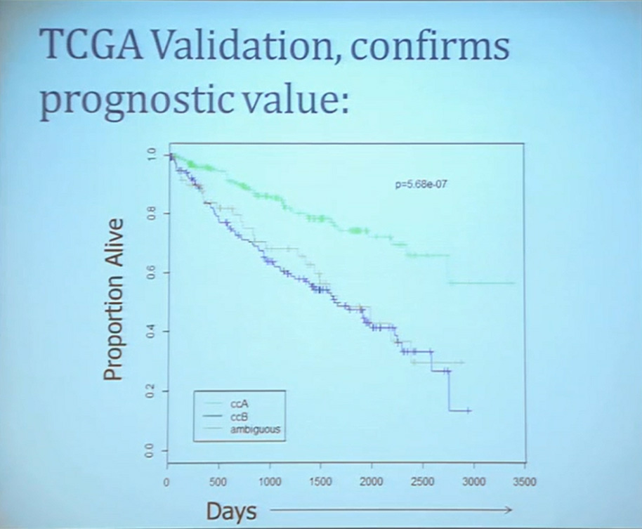 10 TCGA Validation, confrims prognostic value