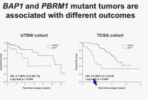 BRUG 12 BAP1 & PBRM1 diff outcomes